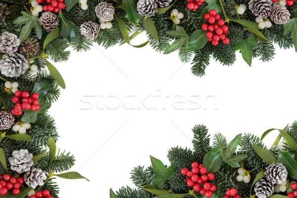 Klimop maretak grens christmas winter Blauw Stockfoto © marilyna