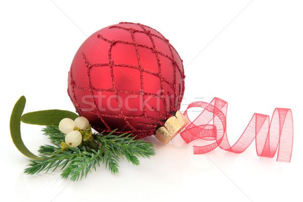 Рождества безделушка красный украшение омела белая ель Сток-фото © marilyna