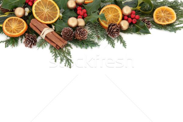 Natale frutta confine floreale essiccati frutta arancione Foto d'archivio © marilyna