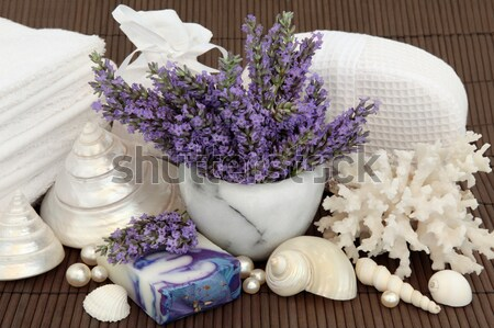 Lavender Herb Spa Stock photo © marilyna