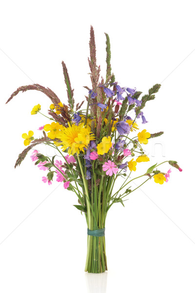 Spring Wildflower Posy Stock photo © marilyna
