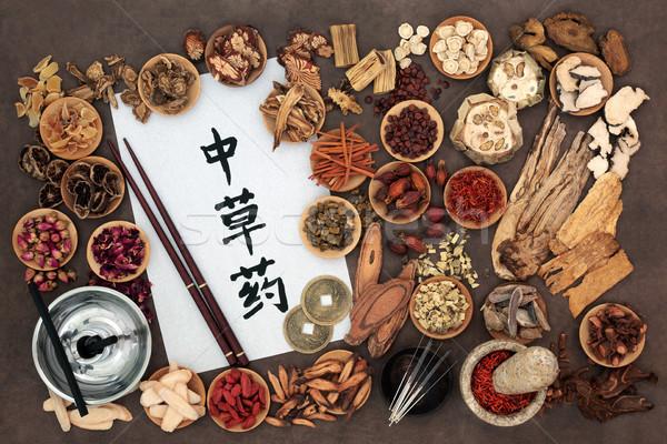 Chino medicina alternativa hierba acupuntura agujas utilizado Foto stock © marilyna