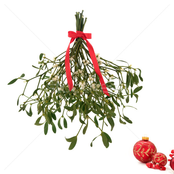 Mistletoe   Stock photo © marilyna