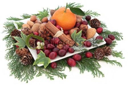 Christmas Bounty Stock photo © marilyna
