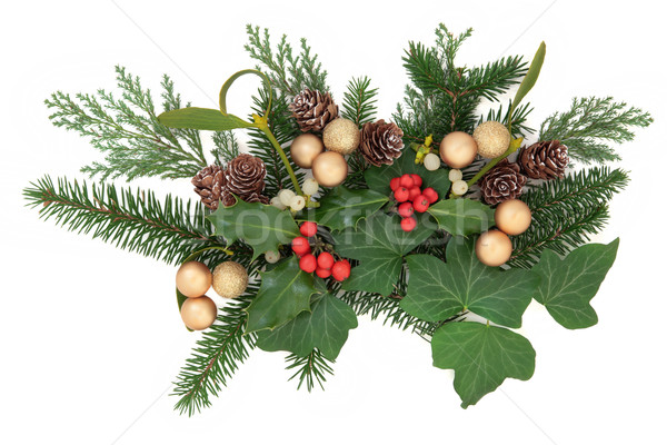 Christmas Floral Display Stock photo © marilyna