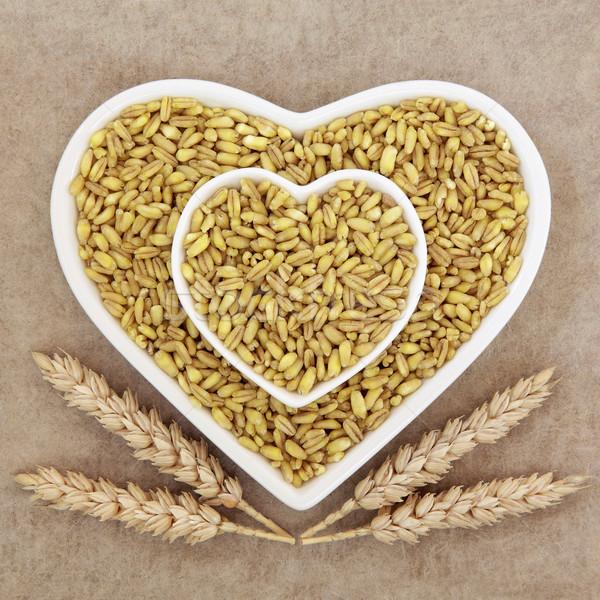 Kamut Khorasan Wheat Stock photo © marilyna