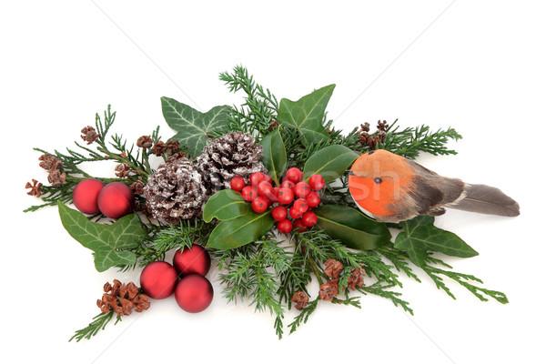 Seasons Greetings Stock photo © marilyna