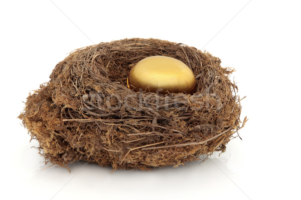 Golden Nest Egg Stock photo © marilyna