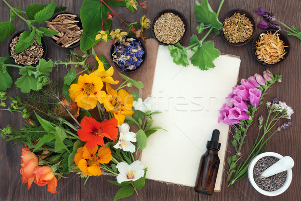 Stock photo: Naturopathic Flowers and Herbs