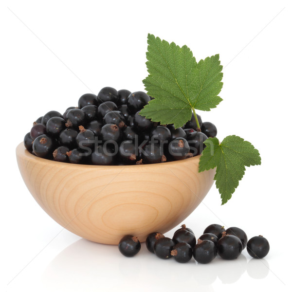 Blackcurrant Fruit Stock photo © marilyna