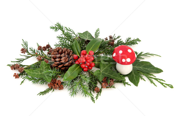 Festive Winter Decoration Stock photo © marilyna