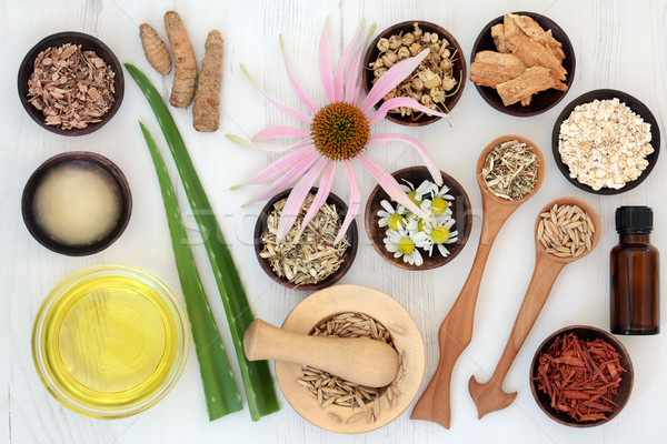 Herbal Skincare with Healing Ingredients Stock photo © marilyna