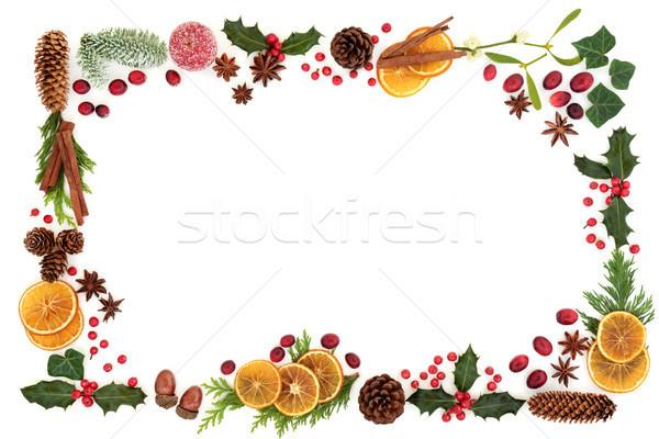 Christmas flora żywności granicy tradycyjny zimą Zdjęcia stock © marilyna