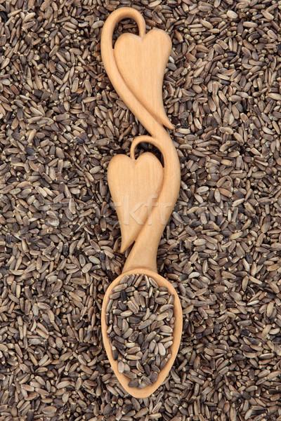 Milk Thistle Seeds Stock photo © marilyna