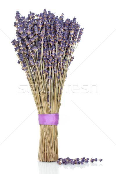 Сток-фото: лаванды · трава · цветы · сушат · цветок