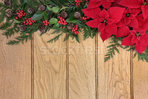 Poinsettia Flowers on Oak Stock photo © marilyna