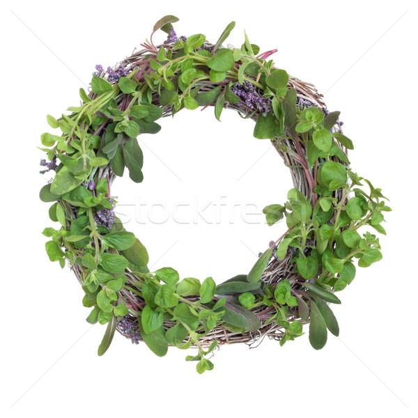 Herb Leaf Garland Stock photo © marilyna