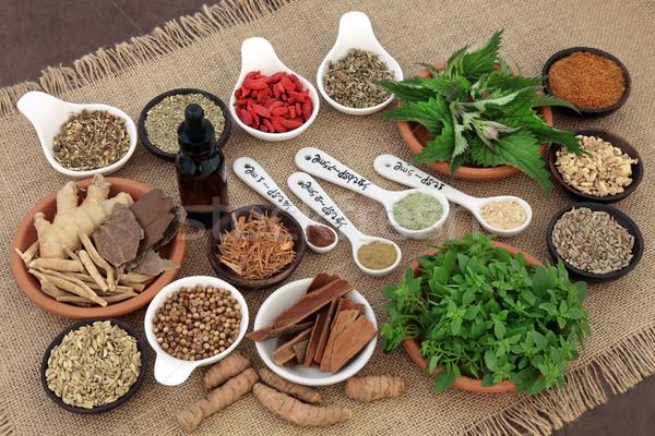 Gyógynövények egészség gyógynövény fűszer étel porcelán Stock fotó © marilyna