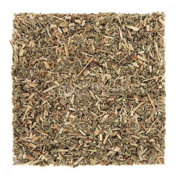 Agrimony Herb Leaf Stock photo © marilyna
