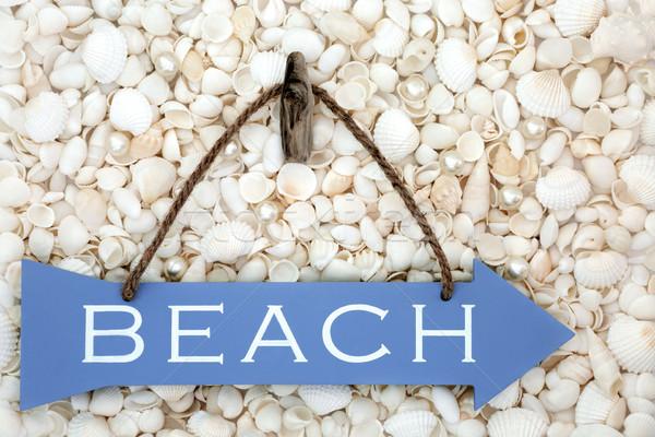 Spiaggia segno conchiglie perle legno blu Foto d'archivio © marilyna