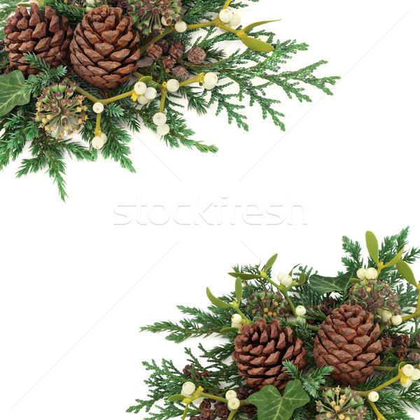 Winter Greenery Arrangement Stock photo © marilyna