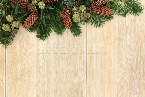 Zimą zieleń granicy christmas dekoracji bluszcz Zdjęcia stock © marilyna