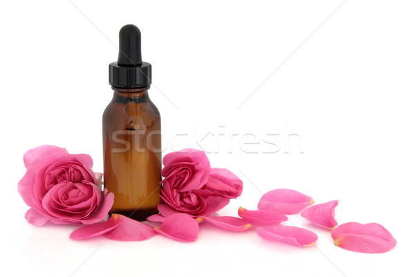 Rose Flower Essence Stock photo © marilyna