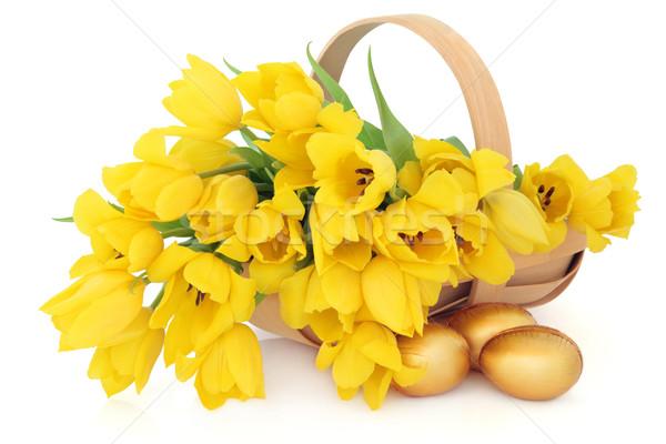 Пасху корзины желтый Tulip цветок Сток-фото © marilyna