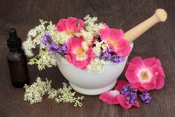 Zdjęcia stock: Uzdrowienie · kwiaty · zioła · wzrosła · lawendy · herb