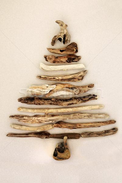 Streszczenie driftwood drzewo krem środowiskowy Zdjęcia stock © marilyna