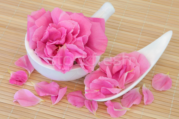 Rose Petal Flowers Stock photo © marilyna