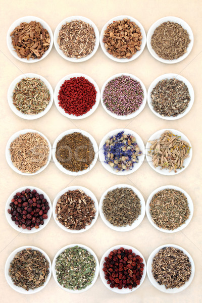 Naturopathic Herbs Stock photo © marilyna