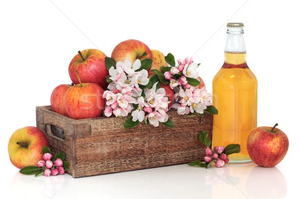 Cidru mere floare floare sticlă roşu Imagine de stoc © marilyna