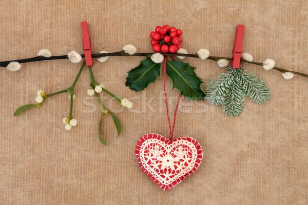Рождества украшение сердце ель омела белая киска Сток-фото © marilyna