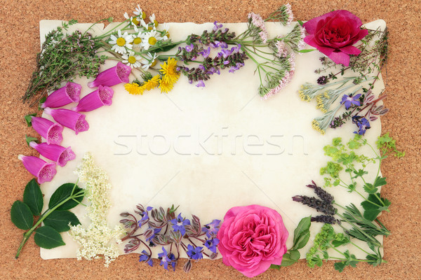 Flower and Herbal Medicine Stock photo © marilyna
