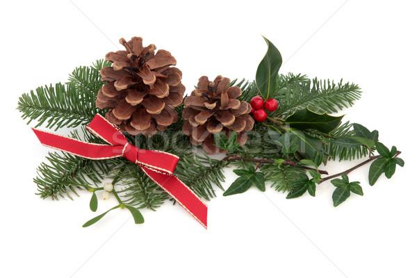 Karácsony növényvilág állatvilág dekoráció borostyán fagyöngy Stock fotó © marilyna