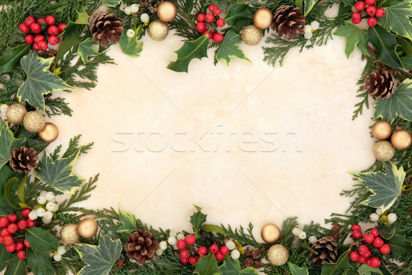Christmas Floral Border Stock photo © marilyna