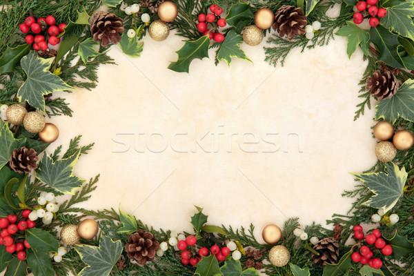 Noel sınır doğal sarmaşık ökseotu Stok fotoğraf © marilyna