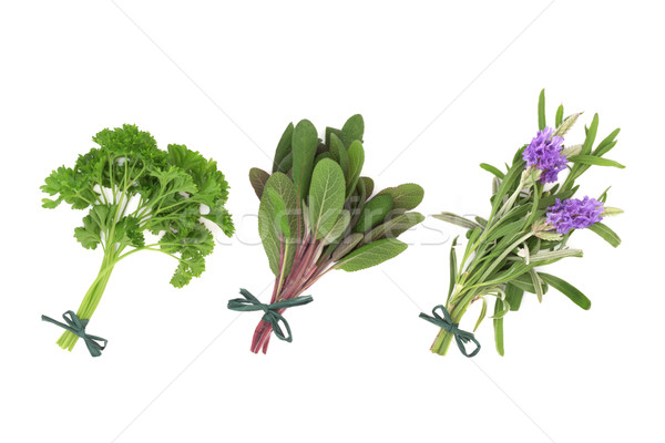 Persil sauge lavande herbes fleur herbe Photo stock © marilyna