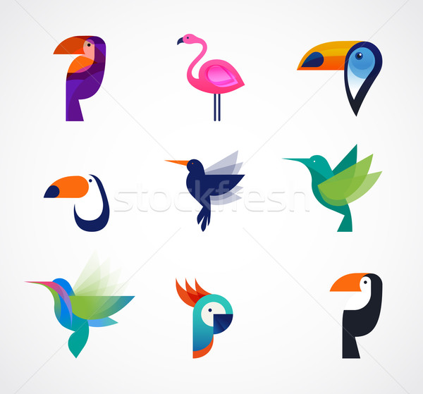 Tropische vogels ingesteld vector iconen flamingo Stockfoto © marish