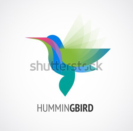 Tropical birds - set of vector icons Stock photo © marish