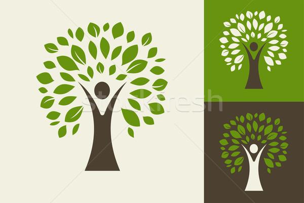Zöld fa logo ikon fa ökológia környezet Stock fotó © marish