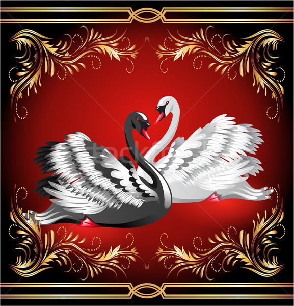 White and black swan on red background  Stock photo © Marisha