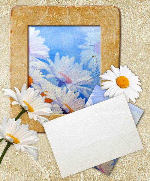 Grunge frame with daisy and paper Stock photo © Marisha