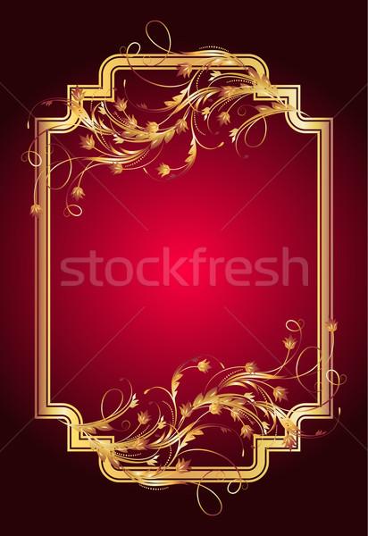 Ornamento elegante frame abstract design Foto d'archivio © Marisha