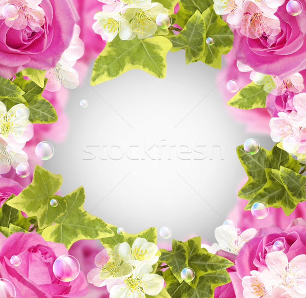 Roses and white flowers Stock photo © Marisha