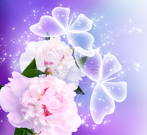 Fiore farfalle trasparente amore felice luce Foto d'archivio © Marisha