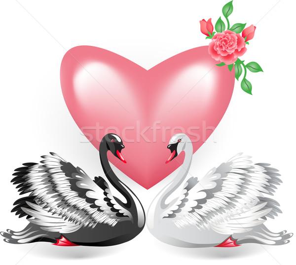элегантный белый черный лебедя розовый сердце Сток-фото © Marisha