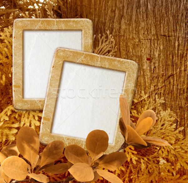 Photo frame legno vecchio grunge texture sfondo Foto d'archivio © Marisha