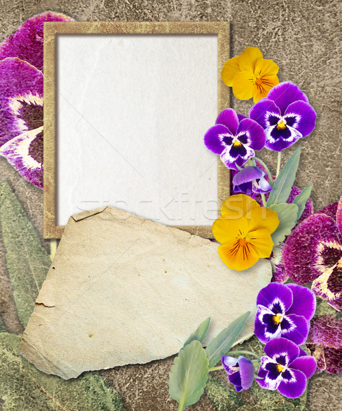 Grunge frame with pansy and paper  Stock photo © Marisha